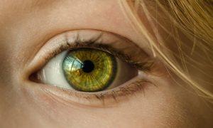 świetlik na bolące oczy